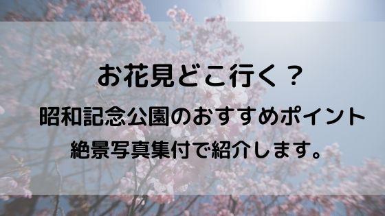 お花見 昭和記念公園