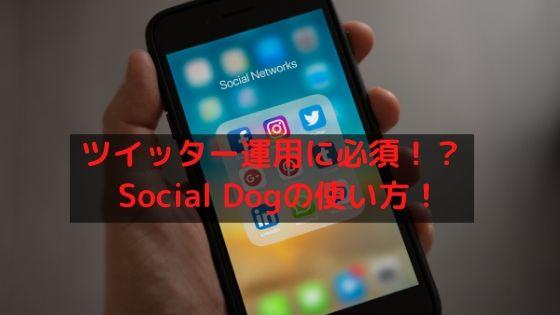 ツイッター運用に必須のSocialDogの使い方