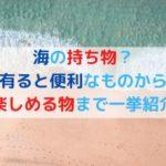 海の持ち物?